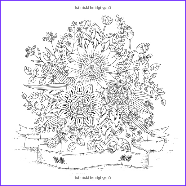 Adult Coloring Book Stress Relieving Animal Designs Best Of Stock Amazon Adult Coloring Book Designs Stress Relief