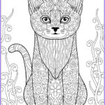 Adult Coloring Book Stress Relieving Animal Designs Inspirational Collection Cat Stress Relieving Designs & Patterns Adult By