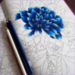 Adult Coloring Books And Pencils Luxury Photos Pin By Bethandsteve Leslie On Coloring In 2019