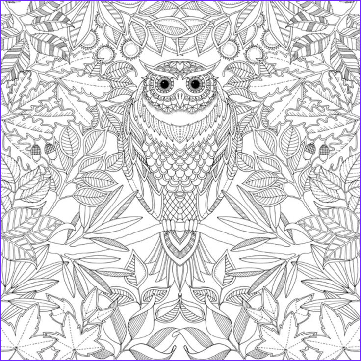 Adult Coloring Books Download Best Of Gallery Colouring Book Pdf Google Search