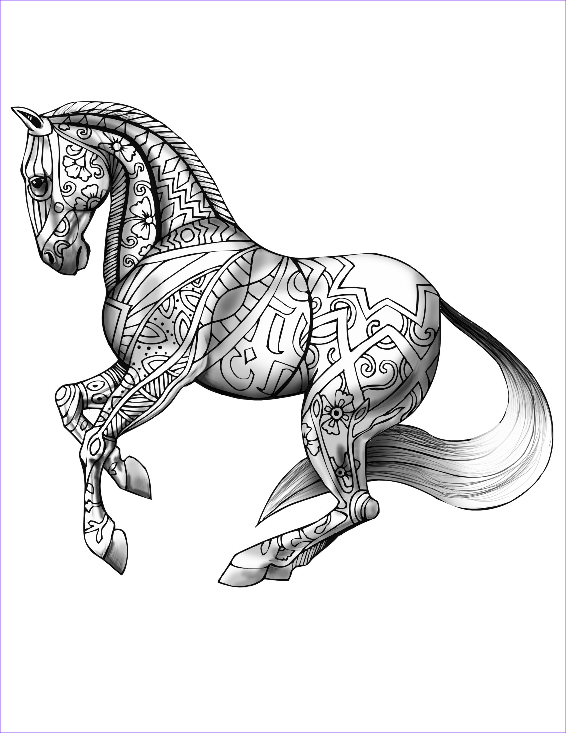 coloring book page for adults print and horse