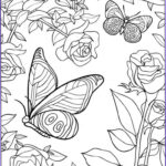 Adult Coloring Books Download Unique Collection Get This Free Printable Butterfly Coloring Pages For