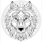 Adult Coloring Books Mandalas Unique Images Mandala With Beautiful Wolf Head And Interlaced Patterns