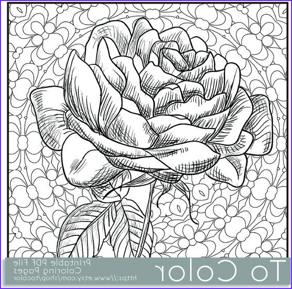 printable rose coloring page for adults