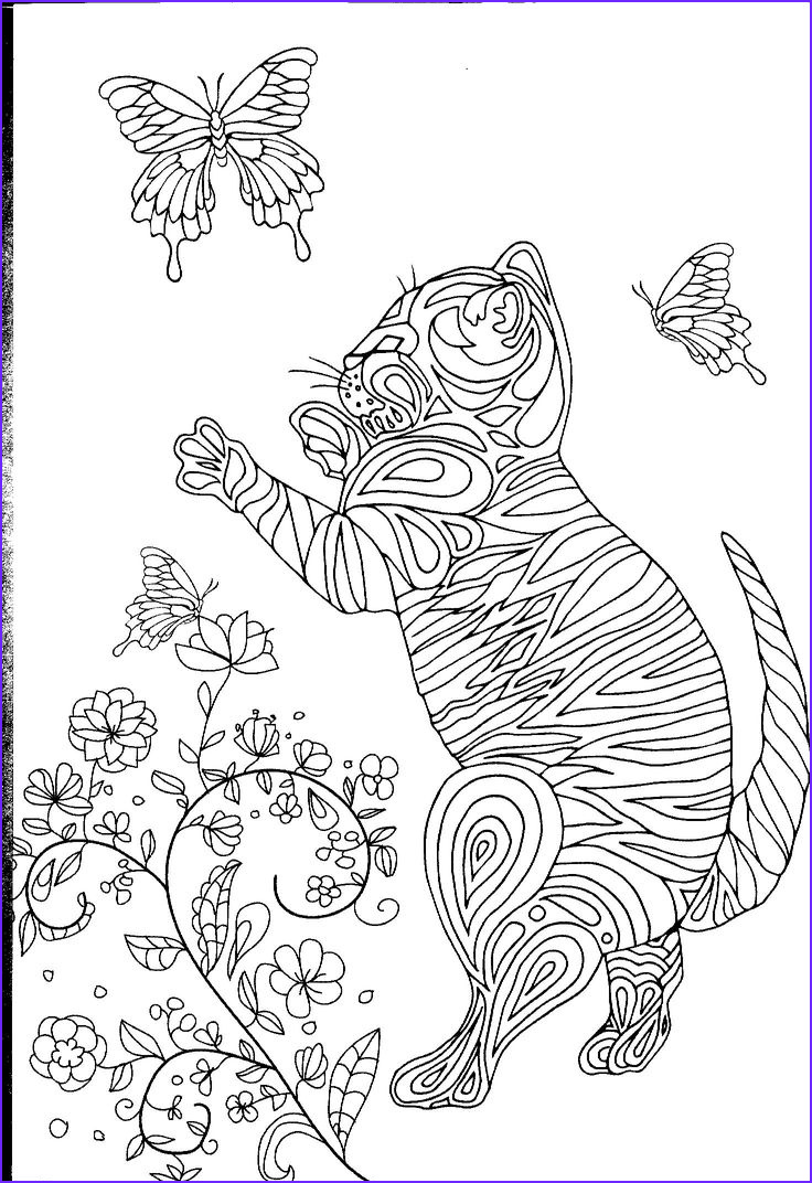 Adult Coloring Cat Beautiful Gallery 17 Best Images About Cats On Pinterest
