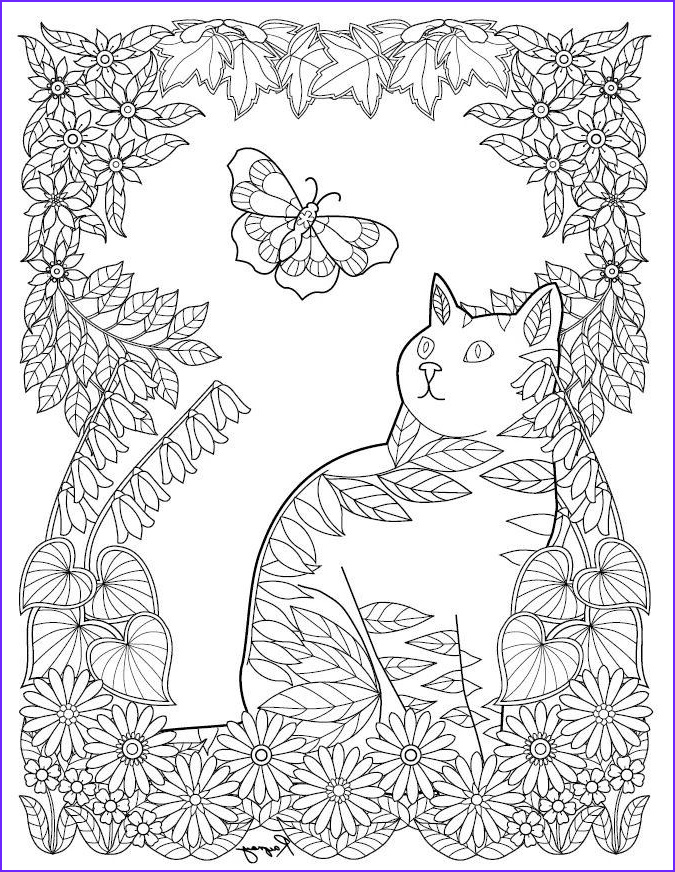 Adult Coloring Cat Beautiful Photography Cat Coloring Page
