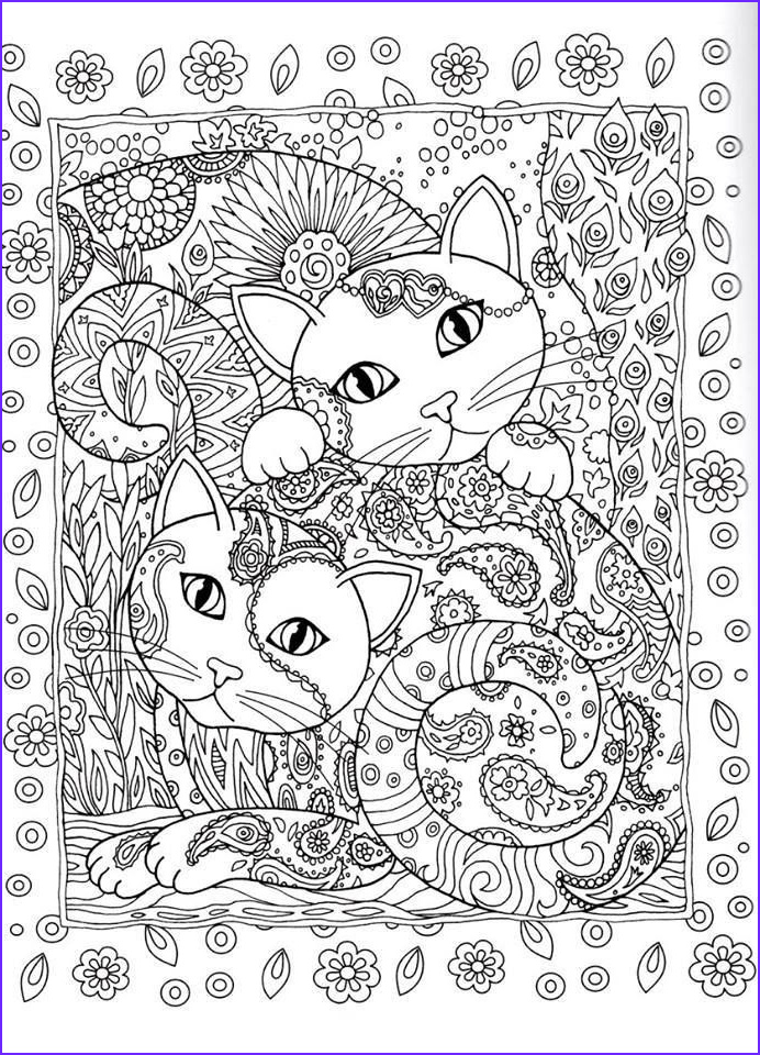 Adult Coloring Cat Cool Stock Creative Cats Coloring Page Dover Abstract Doodle
