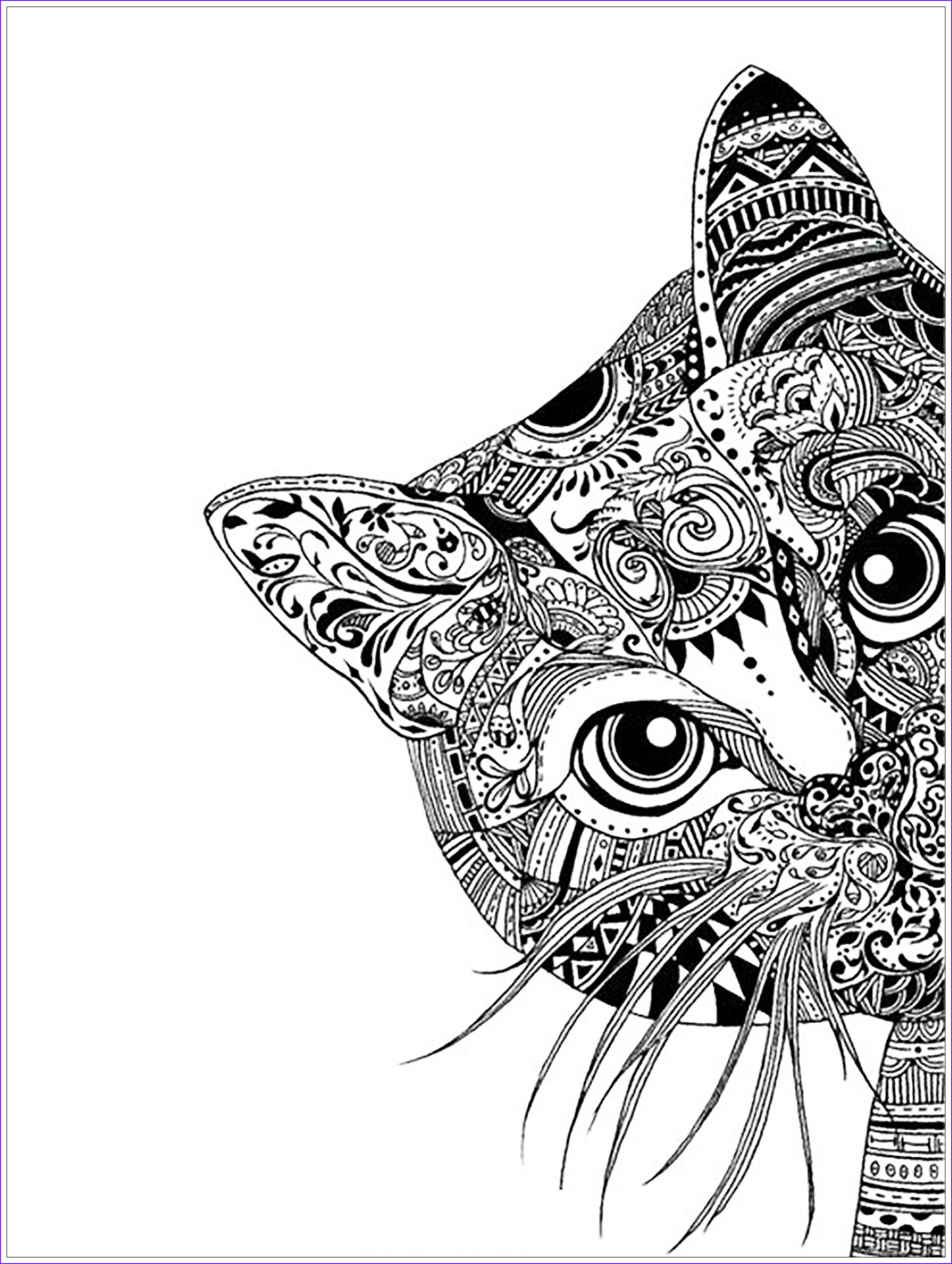 image=animals coloring pages adults cat head 1