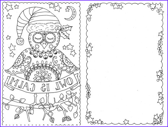 Adult Coloring Christmas Cards Elegant Photos 4 Cards to Color Owl Christmas Cards You Be the Artist
