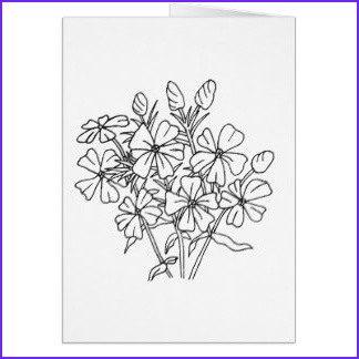 adult coloring greeting cards