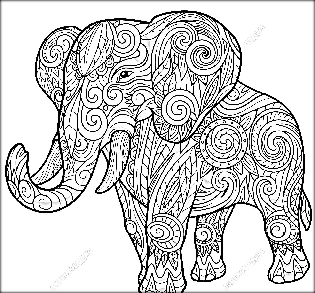 Adult Coloring Elephant Luxury Image Elephant Coloring Pages Coloringsuite