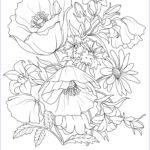 Adult Coloring Flowers Inspirational Photos What A Beautiful Flower Adult Coloring Page