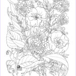 Adult Coloring Flowers Unique Gallery Free Printable Coloring Pages Adults 2015