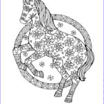 Adult Coloring Horse Inspirational Images 17 Best Images About Coloring Pages On Pinterest