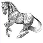 Adult Coloring Horse Luxury Photos Pin By Akii Gaikwad On 101ink
