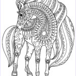 Adult Coloring Horse Unique Gallery Horse Simple Zentangle Patterns Horses Adult Coloring Pages