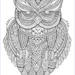 Adult Coloring Owl Unique Image Peaceful Owl Owls Adult Coloring Pages