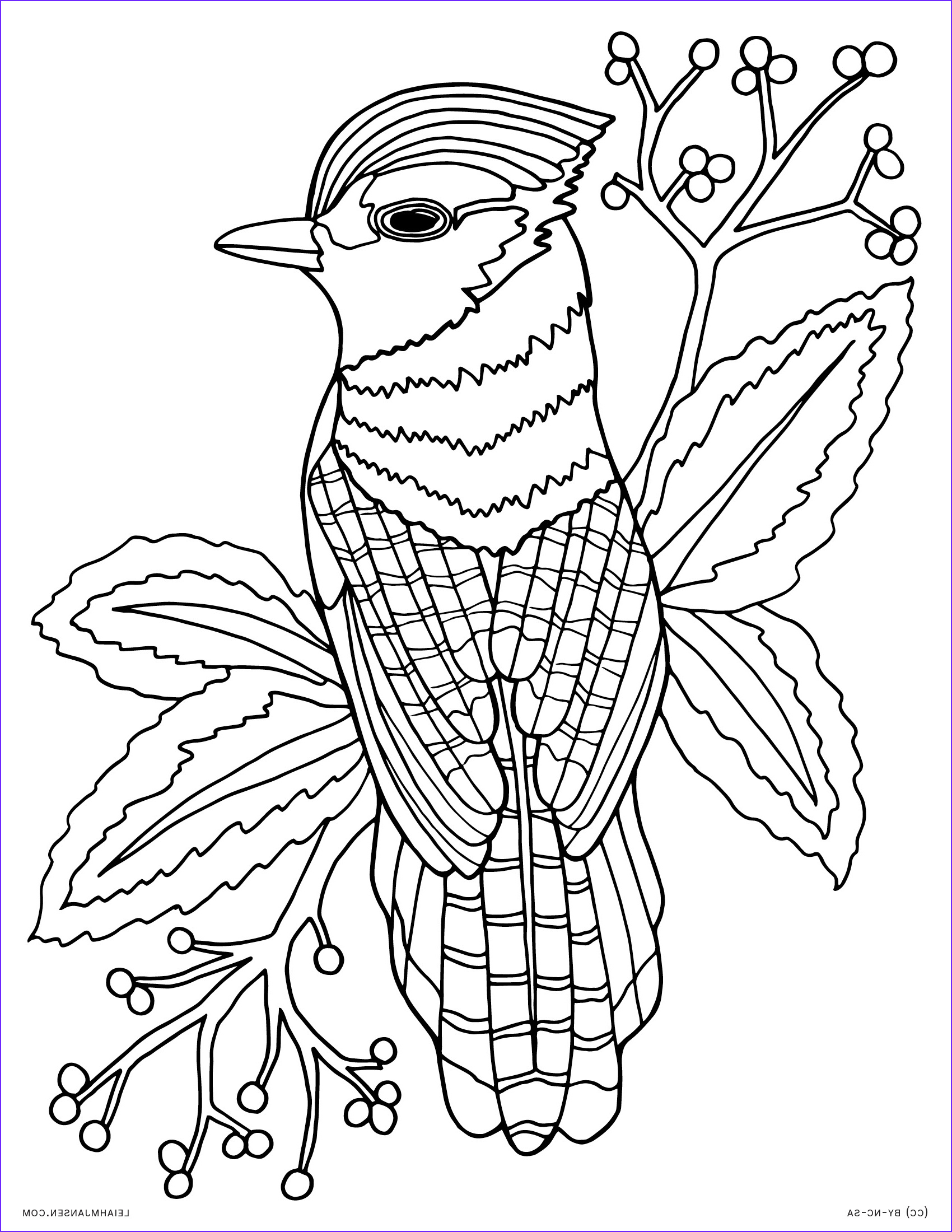 Adult Coloring Pages Animals Beautiful Stock Coloring Pages