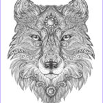 Adult Coloring Pages Animals Elegant Gallery 25 Best Ideas About Adult Colouring Pages On Pinterest