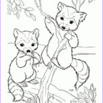 Adult Coloring Pages Animals Elegant Image Free Cute Raccoon Cartoon Animal Coloring Pages Printable