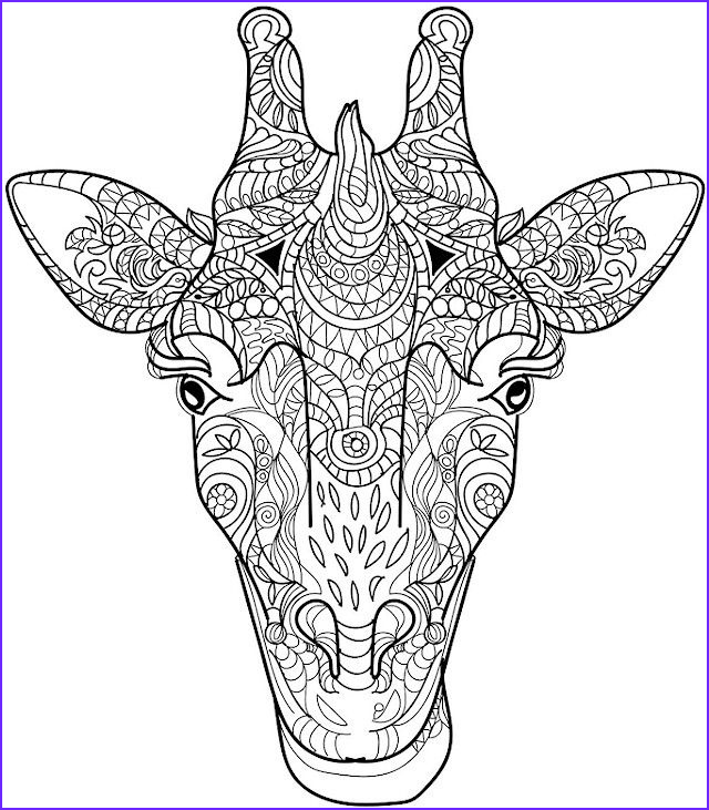 Adult Coloring Pages Animals Inspirational Photography Animal Coloring Pages for Adults Best Coloring Pages for