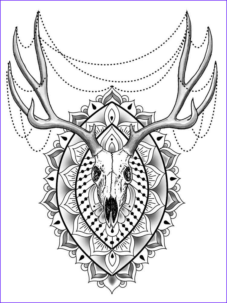 Adult Coloring Pages Animals Inspirational Photos Animal Mandala Coloring Pages for Adult Free Printable