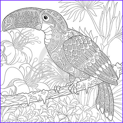 stock illustration zentangle stylized toucan bird sitting palm tree branch hibiscus flowers freehand sketch adult anti stress coloring image