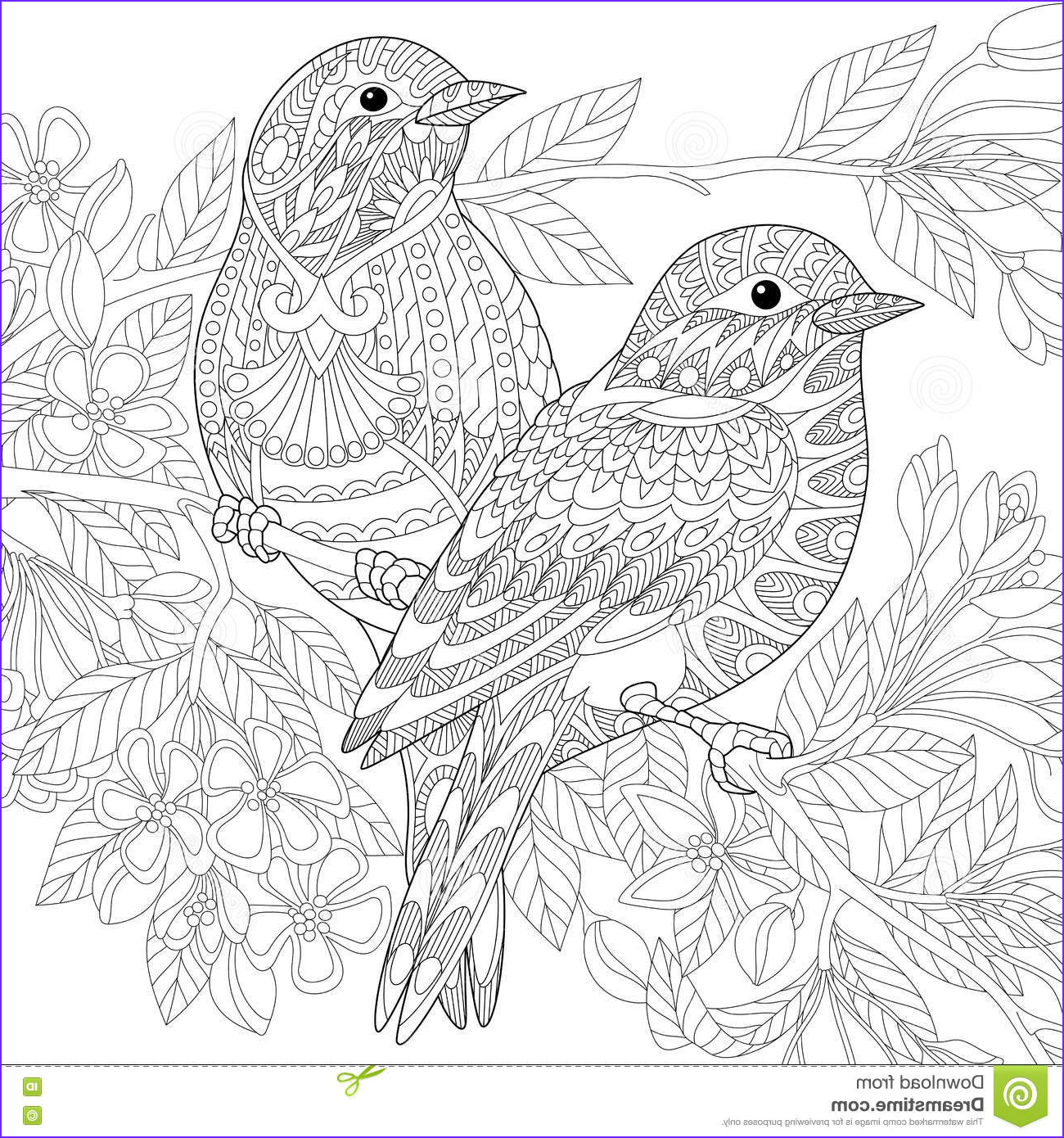 stock illustration zentangle stylized birds two sparrows sitting blooming tree branch freehand sketch adult anti stress coloring book page image