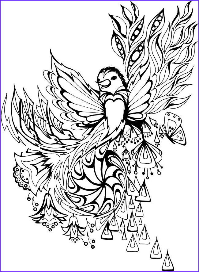 Adult Coloring Pages Birds Beautiful Photos Creative Haven Dream Birds Coloring Book Wel E to Dover