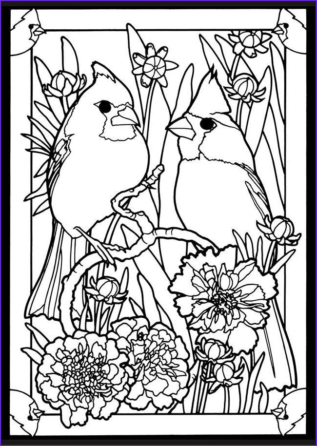Adult Coloring Pages Birds Elegant Photos Beautiful Birds In Mated Pairs Stained Glass Coloring Book
