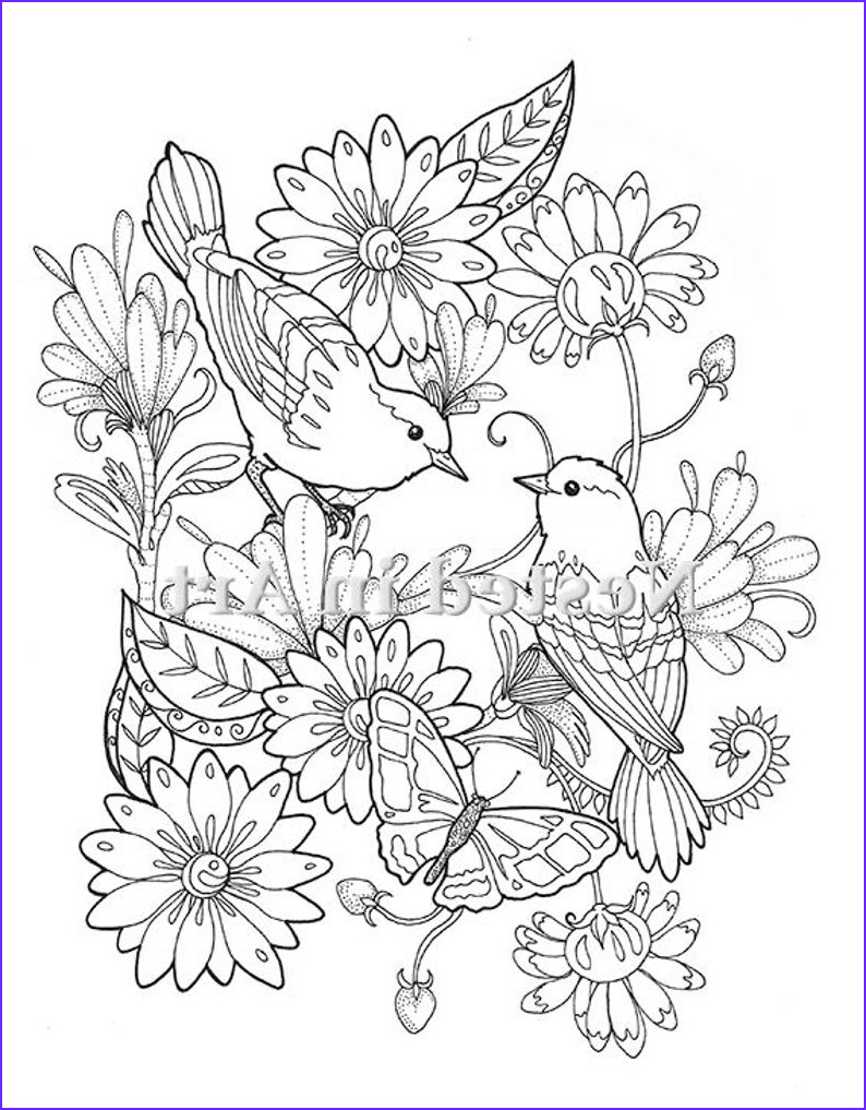 adult coloring page 2 birds and