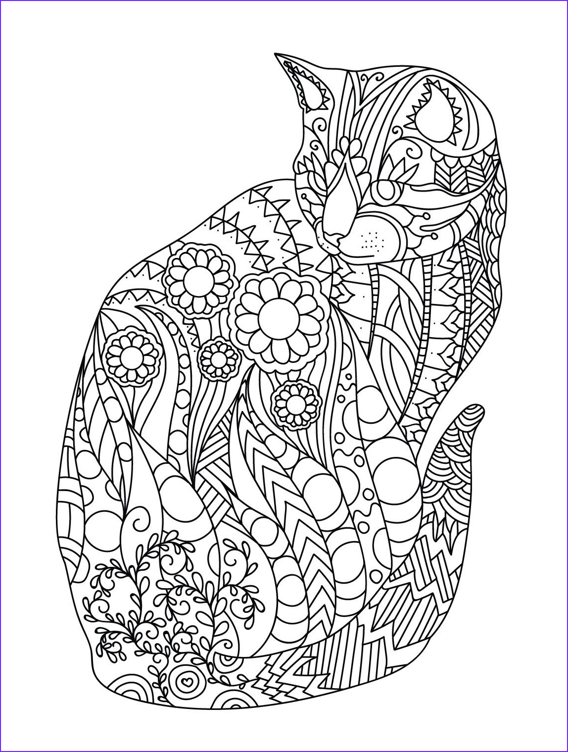 Adult Coloring Pages Cat Cool Photography Cat
