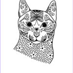 Adult Coloring Pages Cats Awesome Collection Springtime Cat Coloring Page