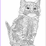 Adult Coloring Pages Cats Cool Photos 591 Best Color Pages Cats Images On Pinterest