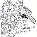 Adult Coloring Pages Cats Luxury Photography 629 Best Adult Colouring Cats Dogs Zentangles Images On