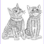 Adult Coloring Pages Cats New Stock 253 Best Images About Coloring Pages For Adults On