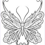 Adult Coloring Pages Easy Beautiful Photography Adult Butterfly Coloring Book