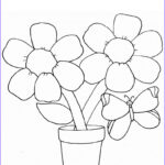 Adult Coloring Pages Easy Cool Gallery Simple Flower Coloring Page With Butterfly For Kids
