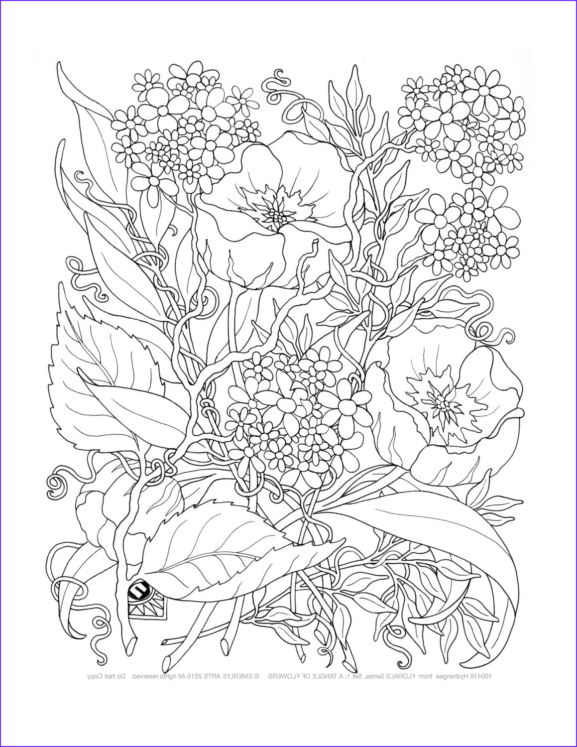 Adult Coloring Pages Flowers New Image Adult Coloring A Tangle Of Flowers Set Of 8 by Emerlyearts