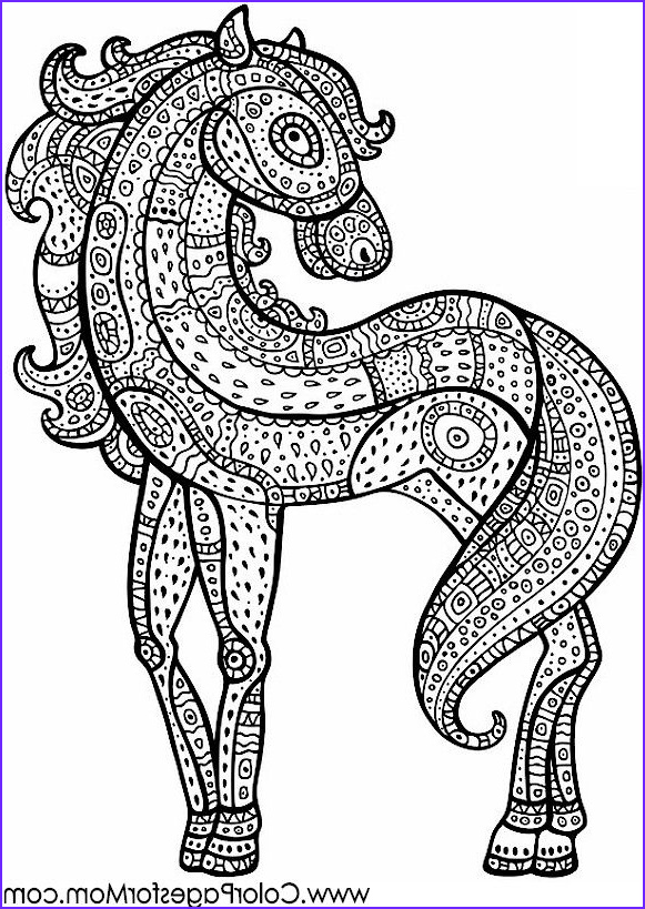 Adult Coloring Pages Horse Beautiful Photos Horse Coloring Page for Adults Adultcoloring