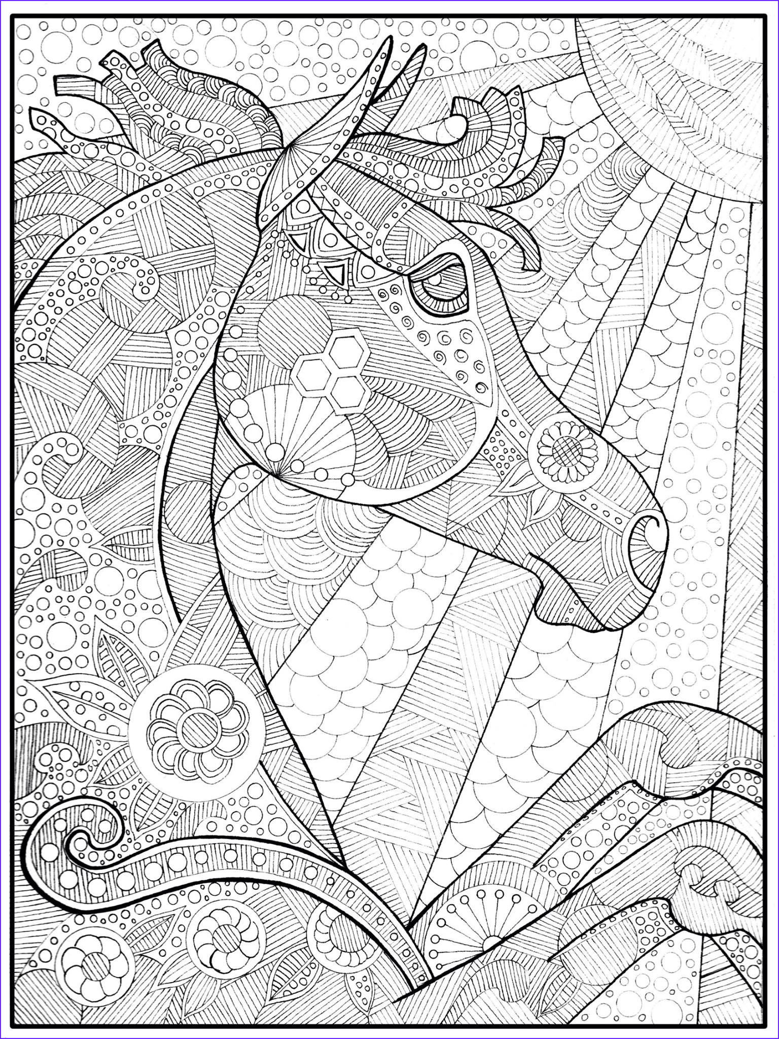 Adult Coloring Pages Horse Cool Photos B8aa Ee8a21e8f Ef3e2076b 1536×2048