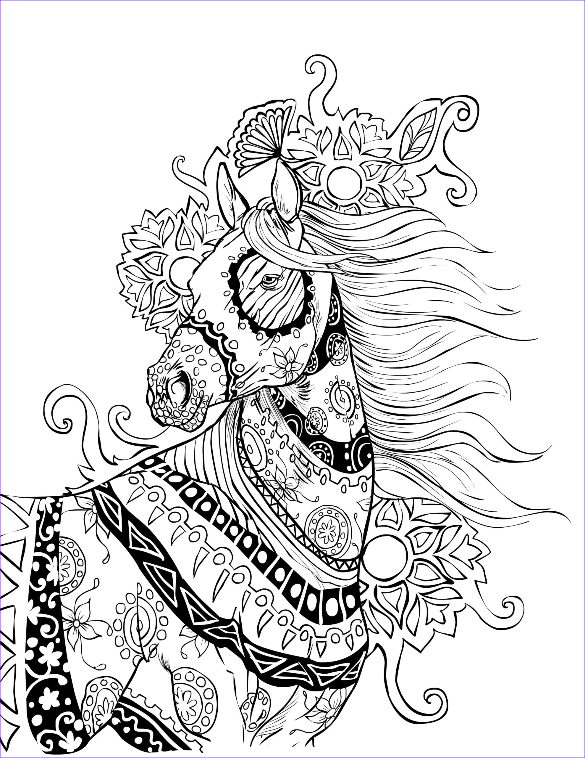 Adult Coloring Pages Horse Elegant Stock Download