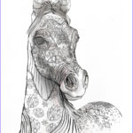 Adult Coloring Pages Horse Unique Images Coloring Books For Adults For Horse Lovers – The Magical