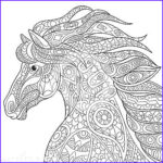Adult Coloring Pages Horses Awesome Gallery Pin On Coloring Horses