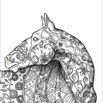 Adult Coloring Pages Horses Beautiful Photos Coloring Book Samples