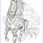 Adult Coloring Pages Horses Beautiful Stock World Horses Adult Coloring