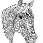 Adult Coloring Pages Horses Cool Collection Custom Pet Portrait Horse Adult Coloring Book Style By