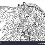 Adult Coloring Pages Horses Cool Collection Hand Drawn Coloring Pages With Horse S Head Illustration