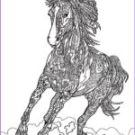 Adult Coloring Pages Horses Elegant Stock 809 Best Animal Coloring Pages For Adults Images On
