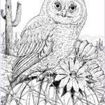 Adult Coloring Pages Owls Awesome Collection 10 Difficult Owl Coloring Page For Adults